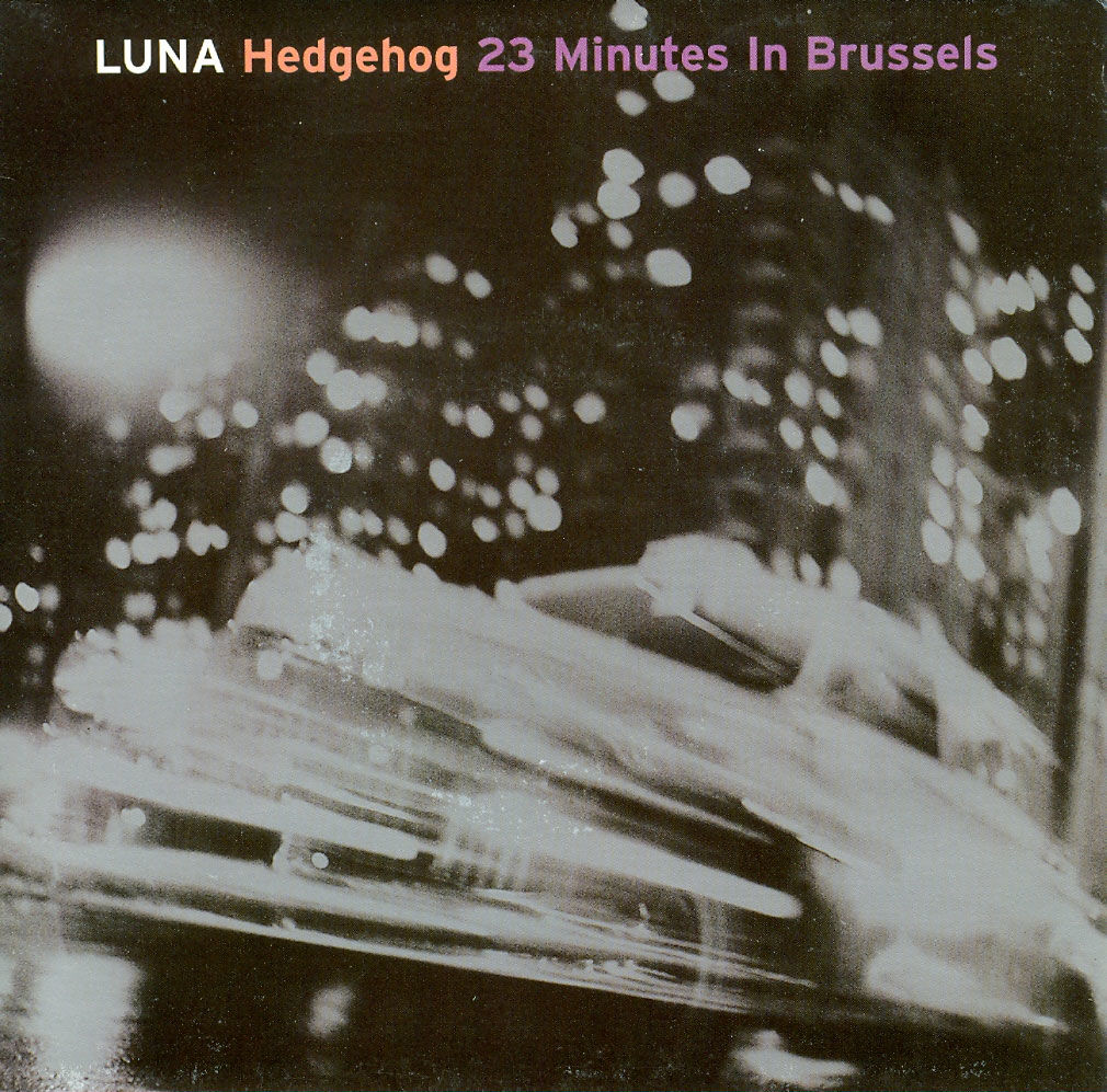 Hedgehog / 23 Minutes in Brussels sleeve image